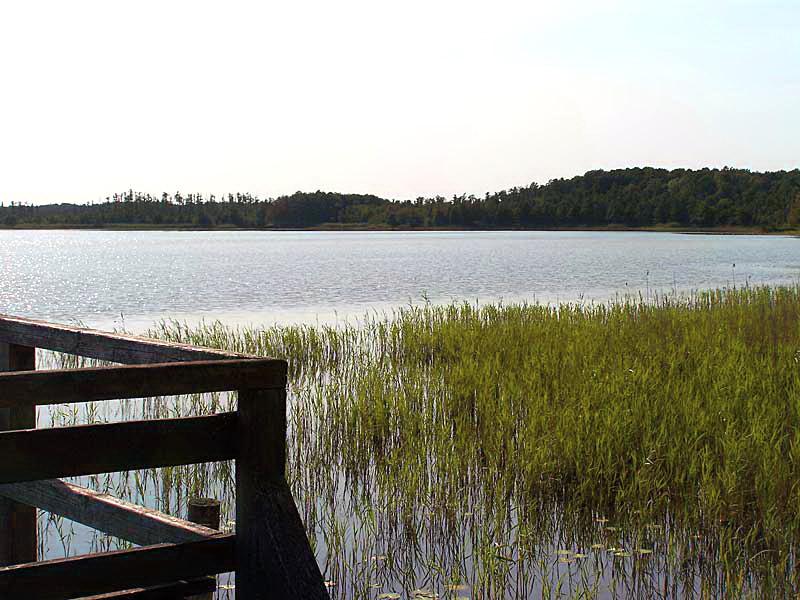Moorsteg mit Aussichtspunkt am Priesterbäker See